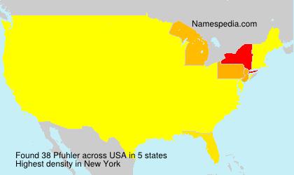Familiennamen Pfuhler - USA