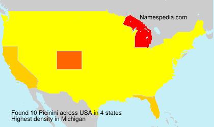 Familiennamen Picinini - USA