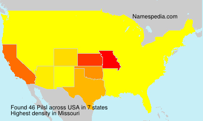 Surname Pilsl in USA