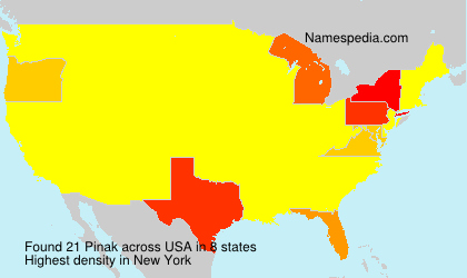 Surname Pinak in USA
