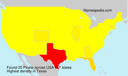 Surname Pinete in USA