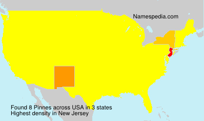 Surname Pinnes in USA