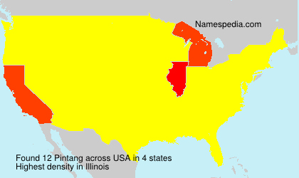 Surname Pintang in USA