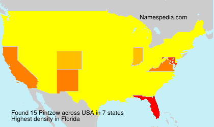 Surname Pintzow in USA