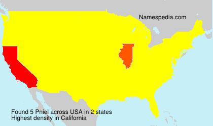 Familiennamen Pniel - USA