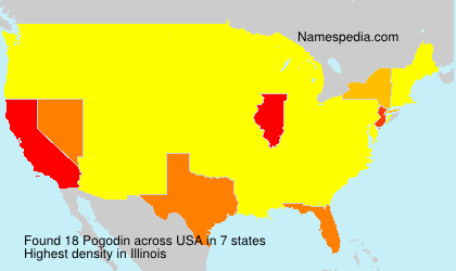 Surname Pogodin in USA