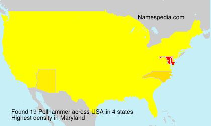 Pollhammer