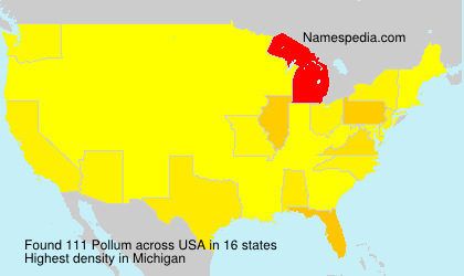 Surname Pollum in USA