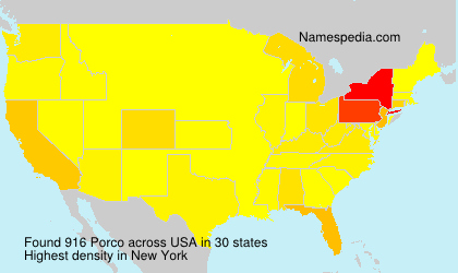 Surname Porco in USA