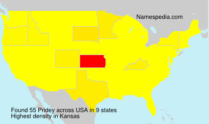Surname Pridey in USA