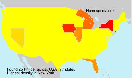 Surname Princer in USA