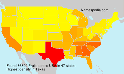 Surname Pruitt in USA