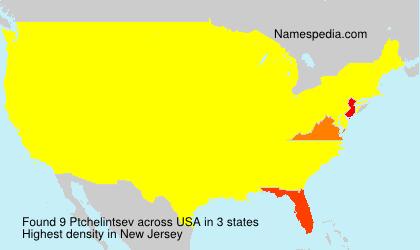 Familiennamen Ptchelintsev - USA