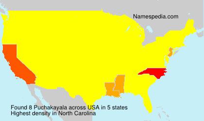 Surname Puchakayala in USA