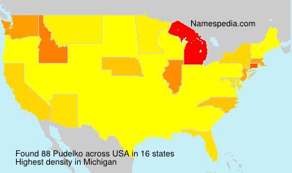 Familiennamen Pudelko - USA