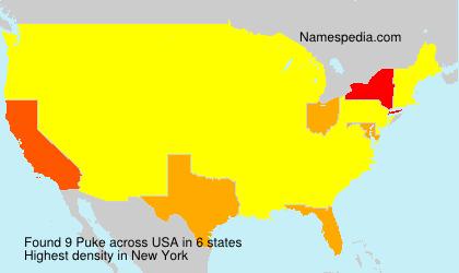 Surname Puke in USA