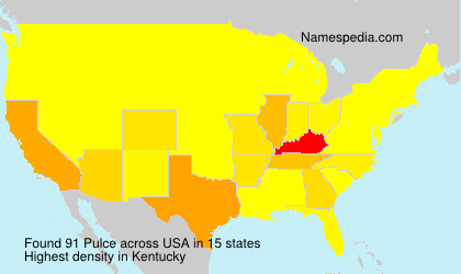 Surname Pulce in USA