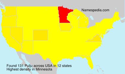 Surname Pulju in USA