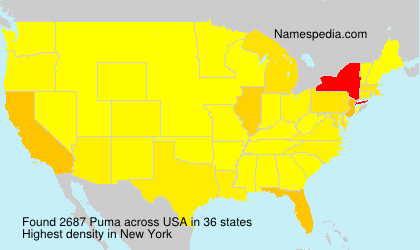 Surname Puma in USA