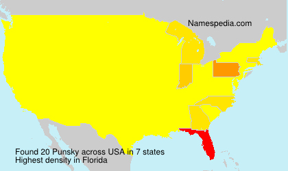 Surname Punsky in USA