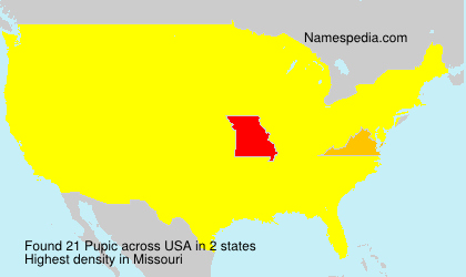 Surname Pupic in USA