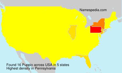 Puppio - USA