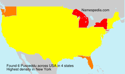Surname Pusceddu in USA