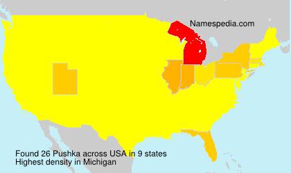 Pushka - USA
