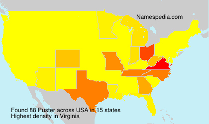 Surname Puster in USA
