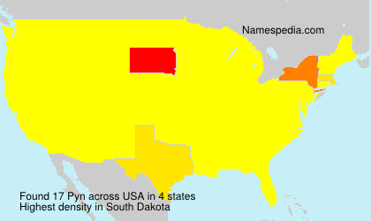 Surname Pyn in USA