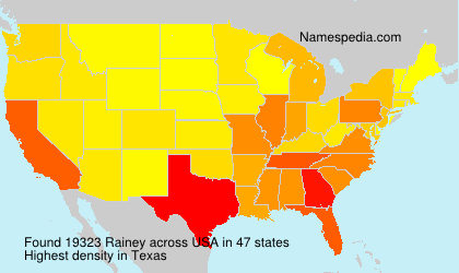 Surname Rainey in USA