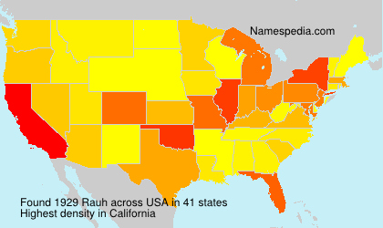 Surname Rauh in USA