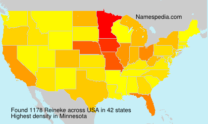 Surname Reineke in USA