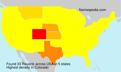 Surname Reusink in USA