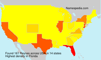Surname Reynes in USA