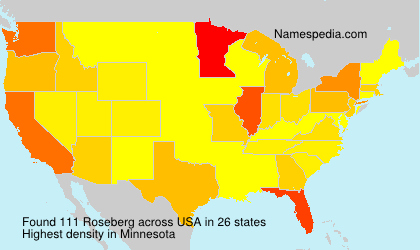 Surname Roseberg in USA