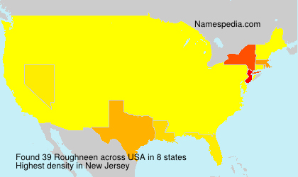 Surname Roughneen in USA