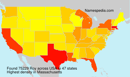Surname Roy in USA