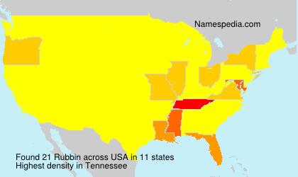 Surname Rubbin in USA