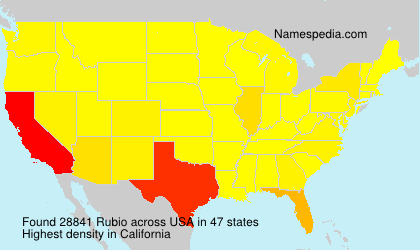 Surname Rubio in USA