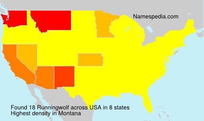 Familiennamen Runningwolf - USA