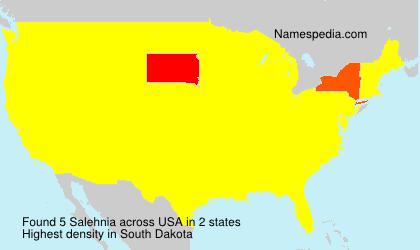 Surname Salehnia in USA