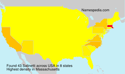 Surname Salinetti in USA