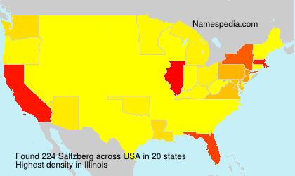 Surname Saltzberg in USA