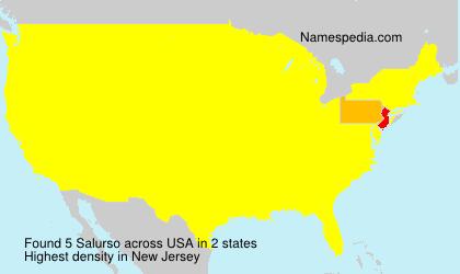 Surname Salurso in USA