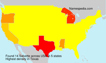 Surname Salvette in USA