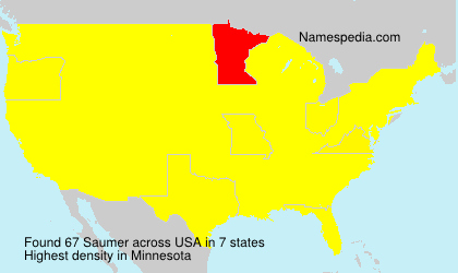 Surname Saumer in USA