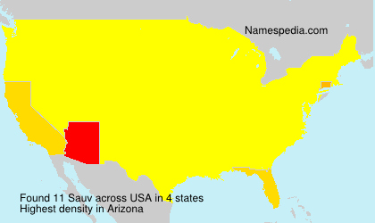 Familiennamen Sauv - USA