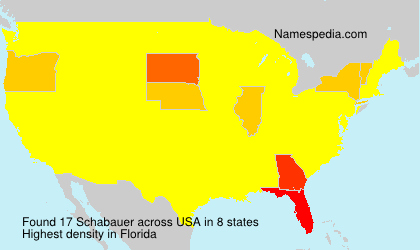 Surname Schabauer in USA
