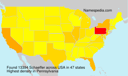 Surname Schaeffer in USA